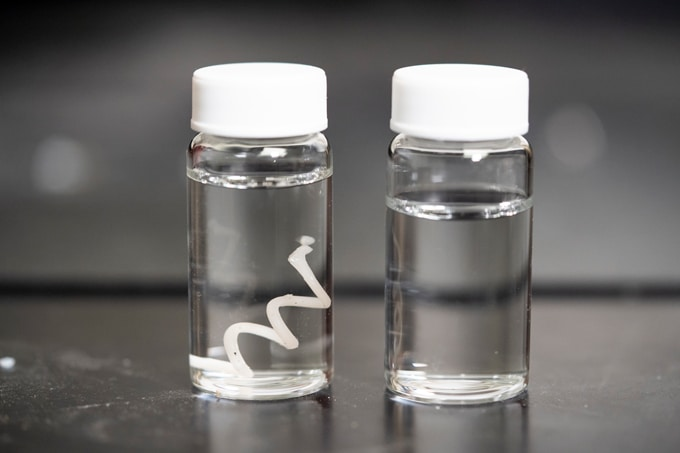 Vials of tap water containing new plastic filament before and after degradation.