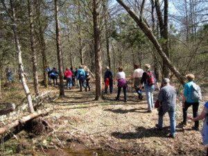 Trails shrinks vs Appalachian Mountain Club