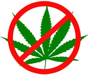 illegal marijuana