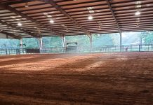 Horse clinic arena